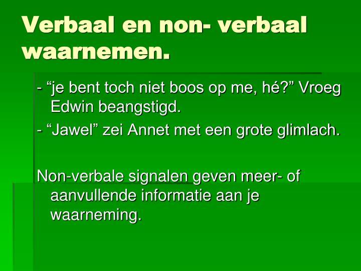 Verbaal en non- verbaal waarnemen.