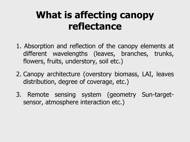 What is affecting canopy reflectance