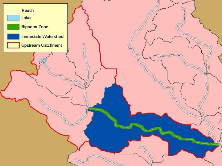 Reaches, Watersheds, Riparian Zones, and Upstream Catchments