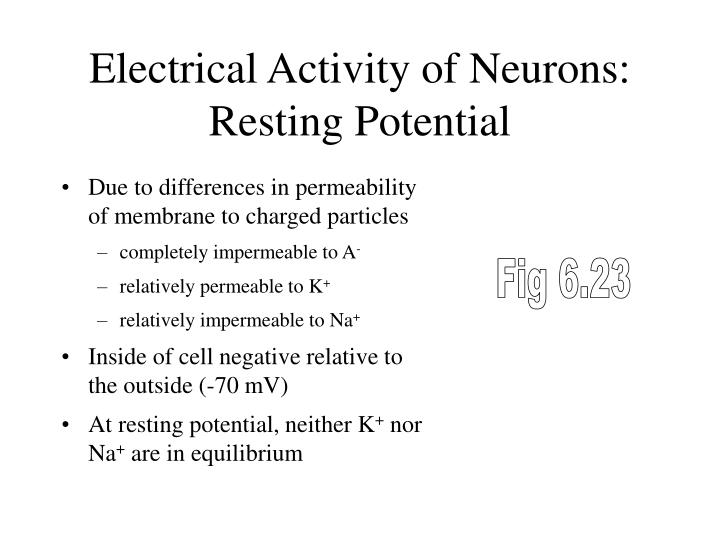 Electrical Activity of Neurons: