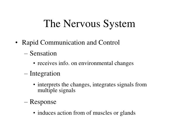 The nervous system1