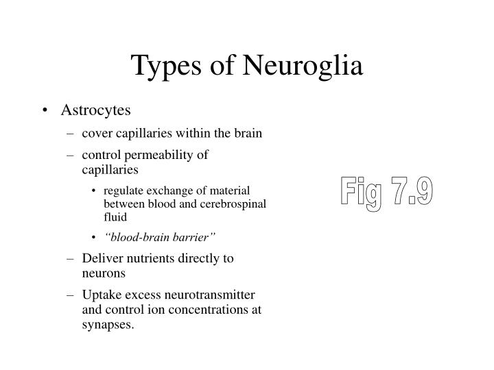 Types of Neuroglia