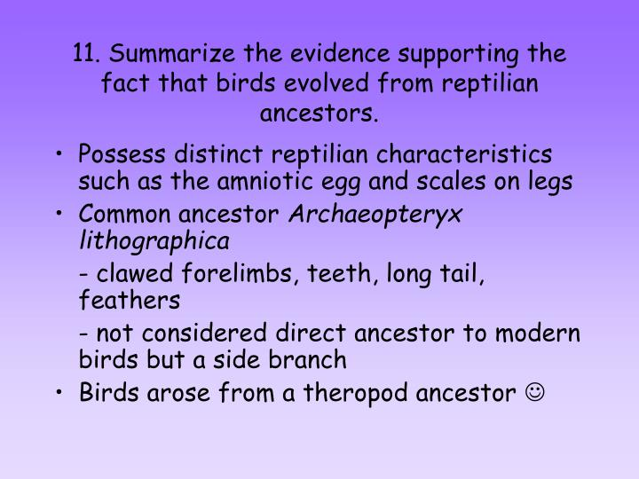 11. Summarize the evidence supporting the fact that birds evolved from reptilian ancestors.