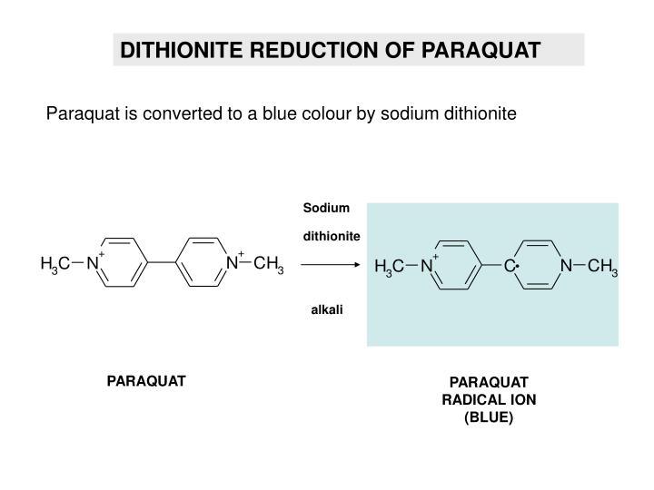 DITHIONITE REDUCTION OF PARAQUAT