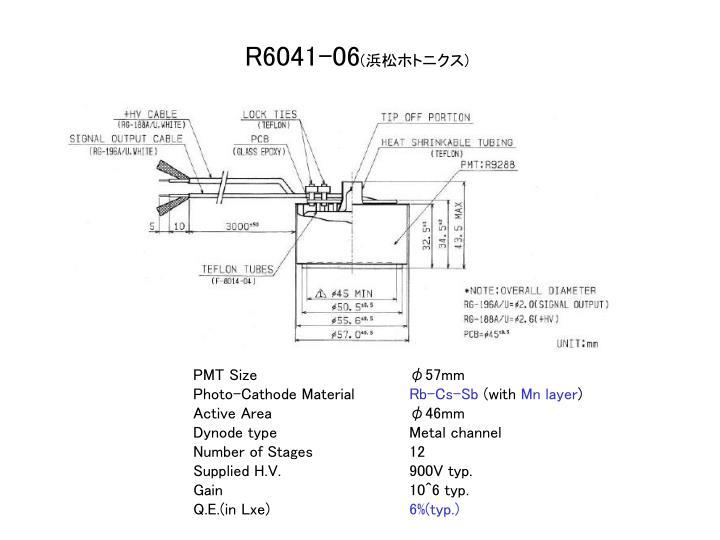 R6041-06
