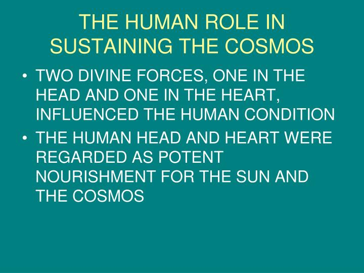 THE HUMAN ROLE IN SUSTAINING THE COSMOS