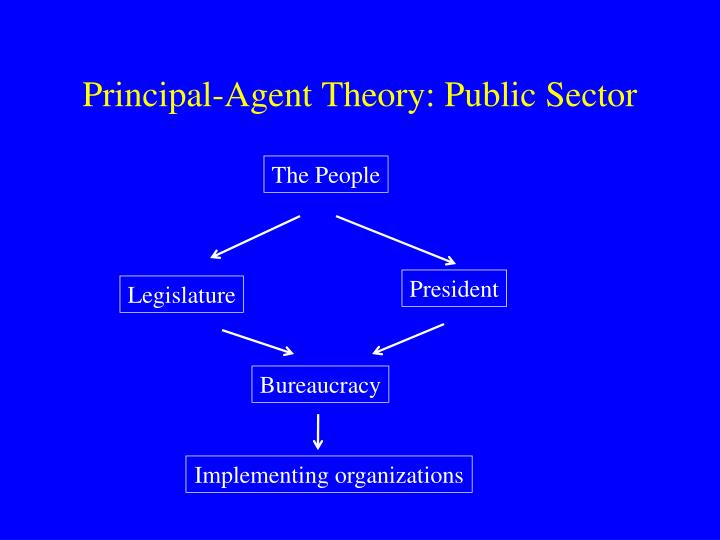 Principal-Agent Theory: Public Sector