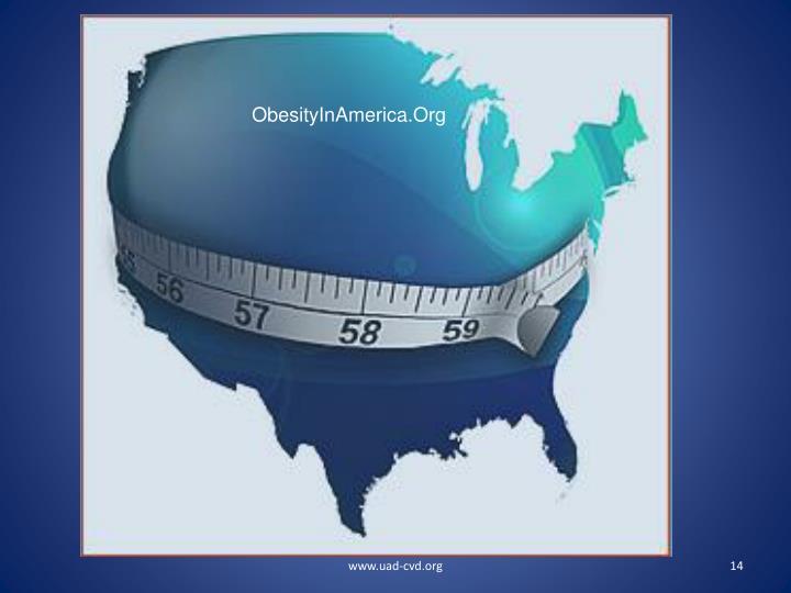 ObesityInAmerica.Org