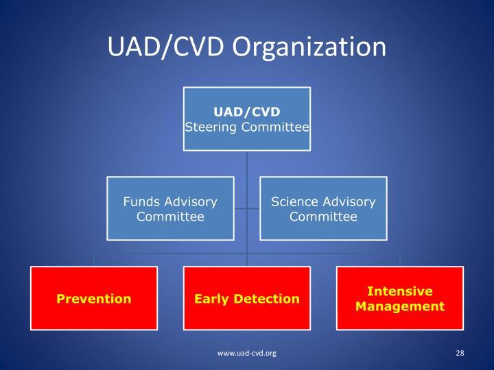 UAD/CVD Organization