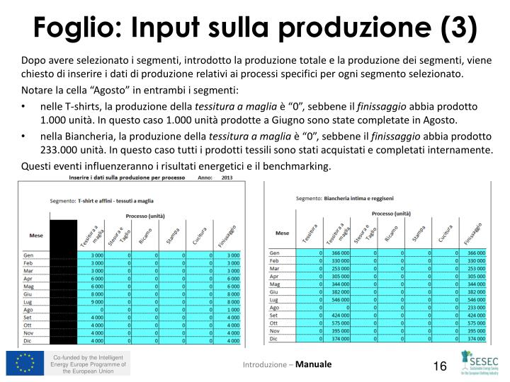 Dopo avere selezionato i segmenti, introdotto la produzione totale e la produzione dei segmenti, viene chiesto di inserire i dati di produzione relativi ai processi specifici per ogni segmento selezionato.