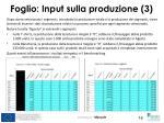 foglio input sulla produzione 3