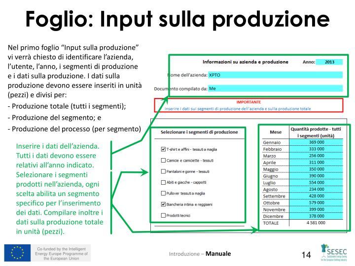 """Nel primo foglio """"Input sulla produzione"""" vi verrà chiesto di identificare l'azienda, l'utente, l'anno, i segmenti di produzione e i dati sulla produzione. I dati sulla produzione devono essere inseriti in unità (pezzi) e divisi per:"""