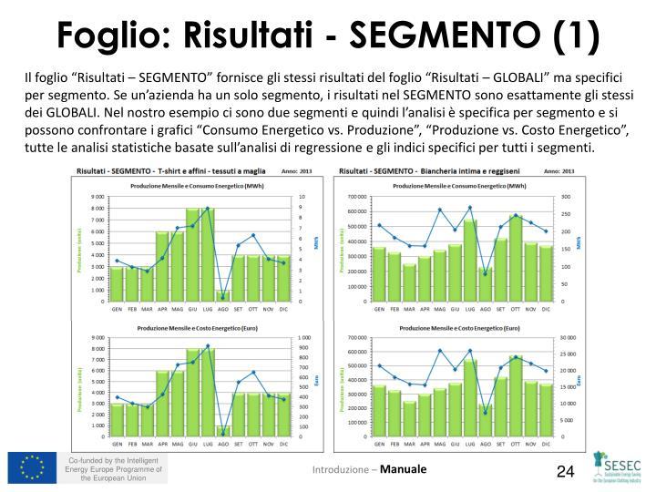 """Il foglio """"Risultati – SEGMENTO"""" fornisce gli stessi risultati del foglio """"Risultati – GLOBALI"""" ma specifici per segmento. Se un'azienda ha un solo segmento, i risultati nel SEGMENTO sono esattamente gli stessi dei GLOBALI. Nel nostro esempio ci sono due segmenti e quindi l'analisi è specifica per segmento e si possono confrontare i grafici """"Consumo Energetico vs. Produzione"""", """"Produzione vs. Costo Energetico"""", tutte le analisi statistiche basate sull'analisi di regressione e gli indici specifici per tutti i segmenti."""