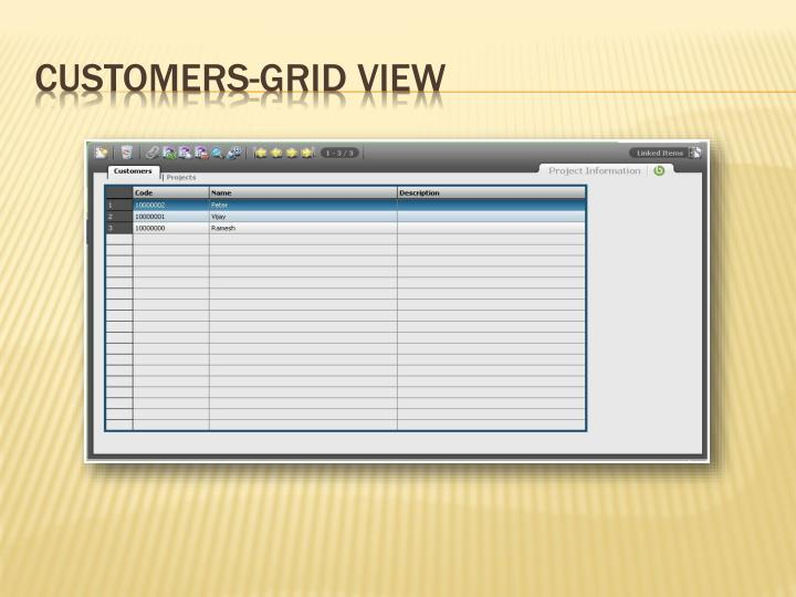 Customers-Grid View