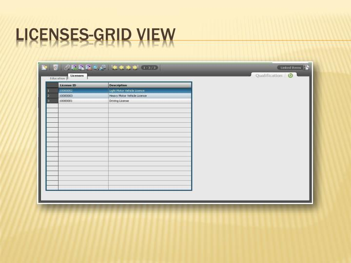 Licenses-Grid View