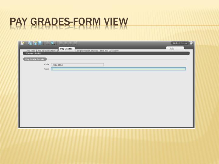 Pay Grades-Form View