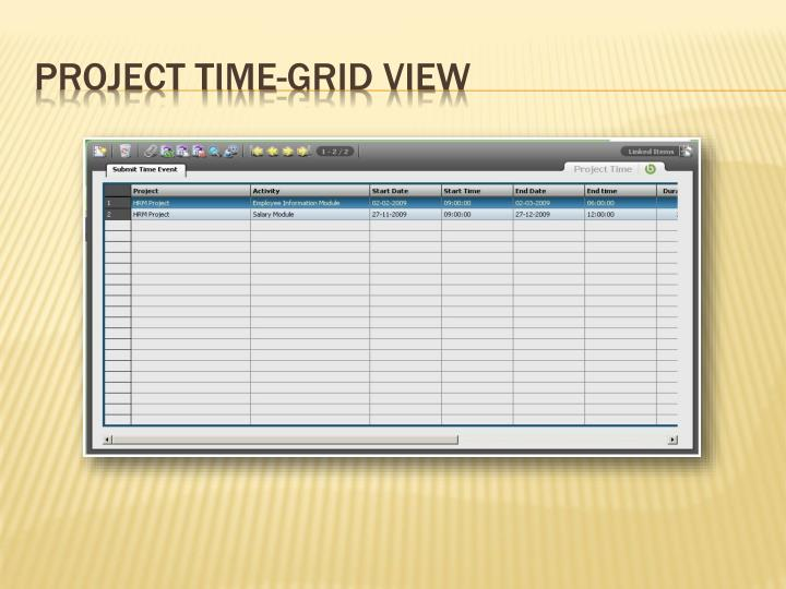 Project Time-Grid View