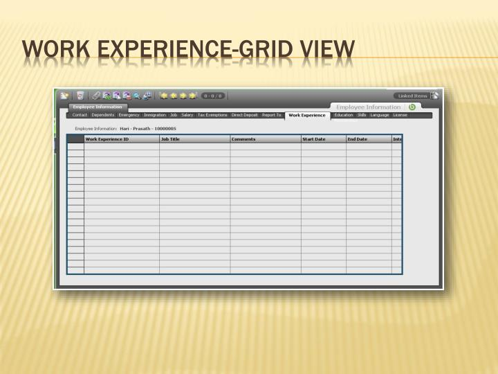Work Experience-Grid View