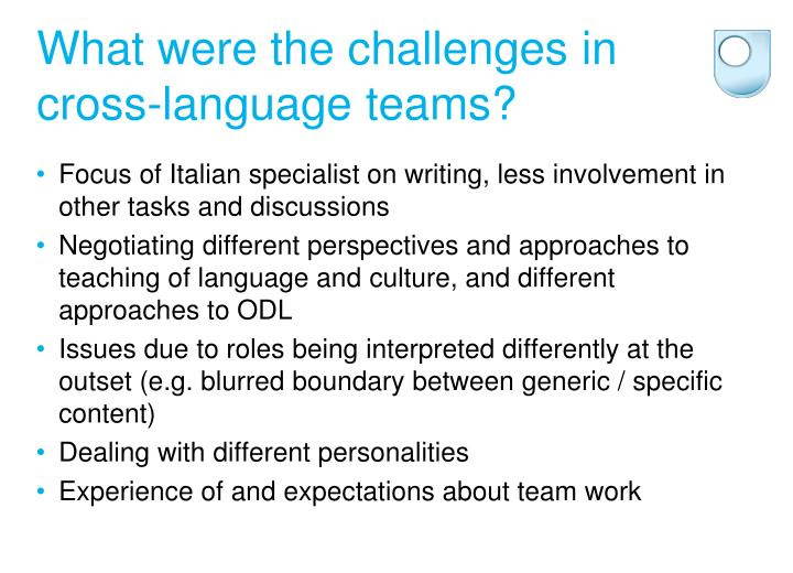 What were the challenges in cross-language teams?