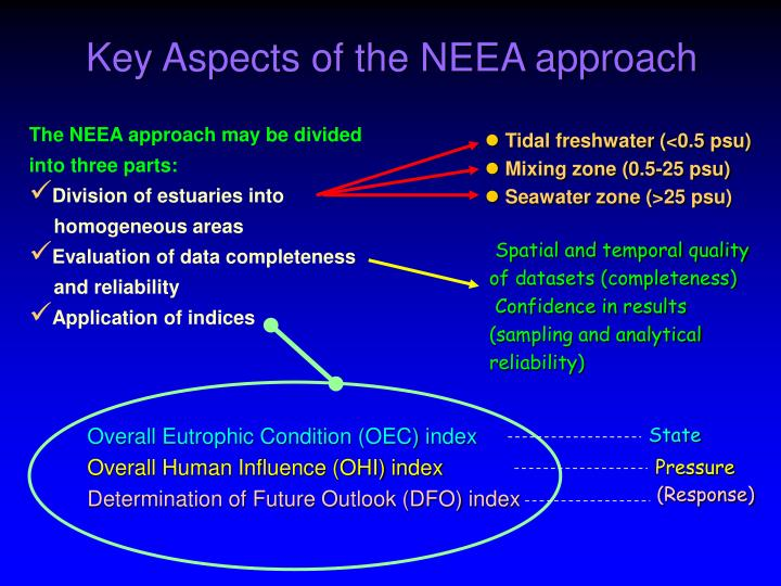 Key aspects of the neea approach
