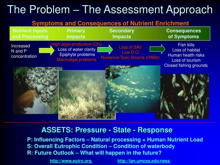 The problem the assessment approach