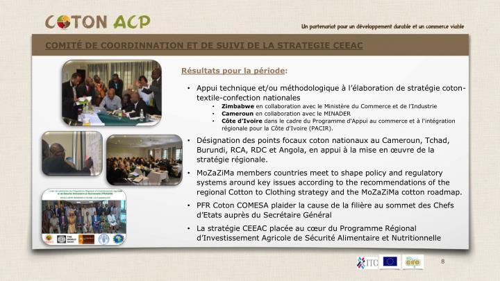 Comité DE COORDINNATION ET DE SUIVI DE LA STRATEGIE CEEAC