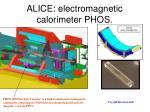alice e lectromagnetic c alorimeter phos