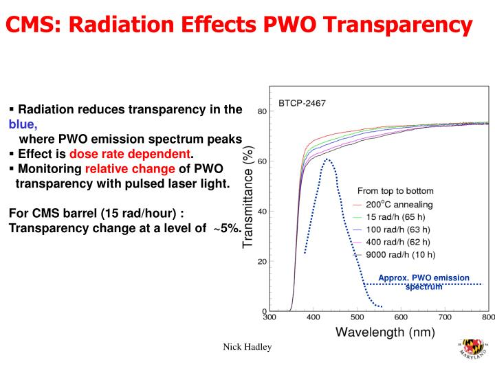 CMS: Radiation Effects PWO Transparency