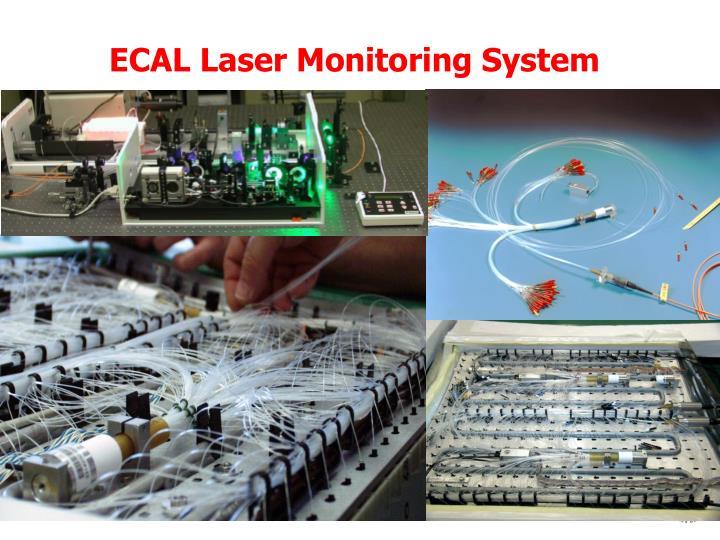ECAL Laser Monitoring System