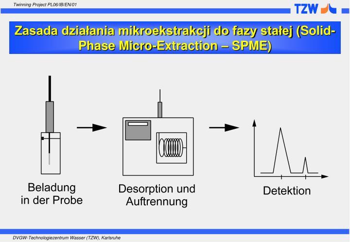 Zasada działania mikroekstrakcji do fazy stałej (