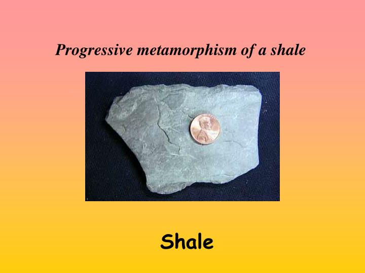 Progressive metamorphism of a shale
