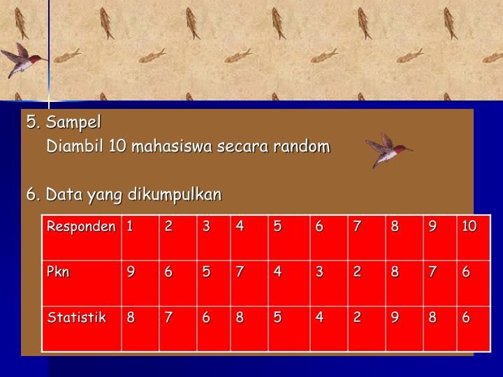 5. Sampel