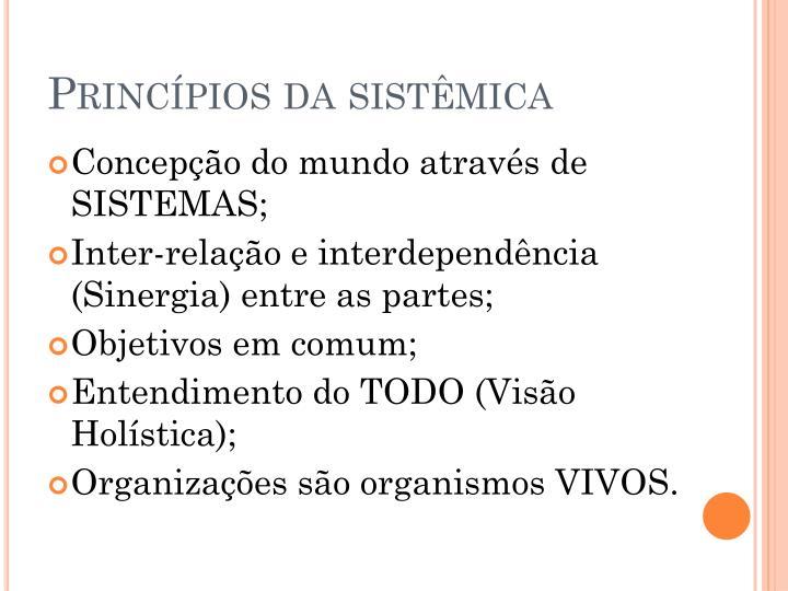 Princípios da sistêmica