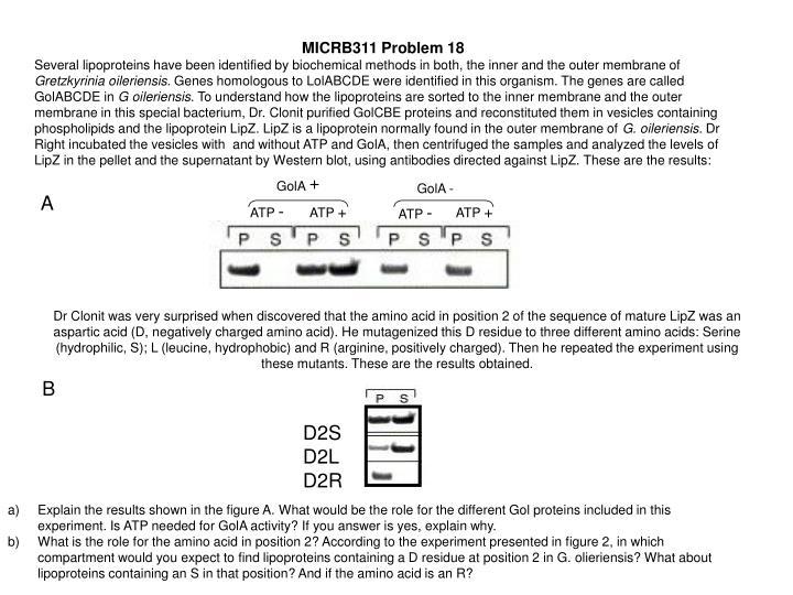 MICRB311 Problem 18