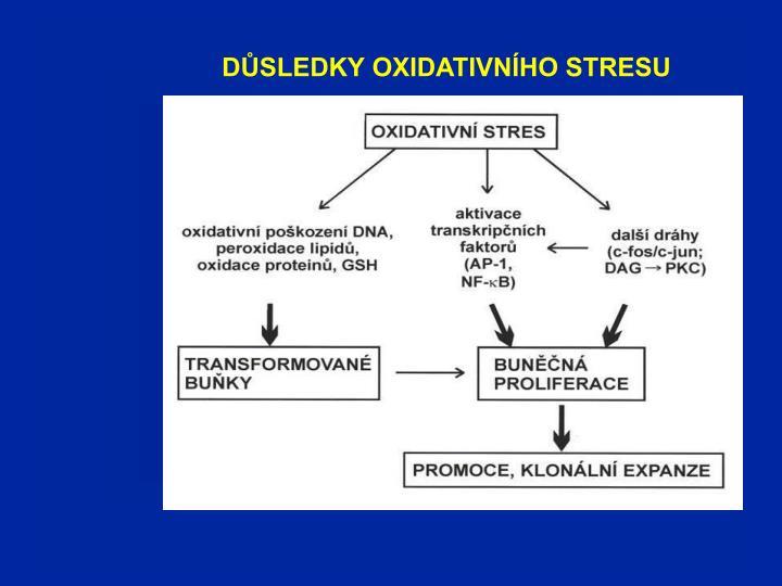 DŮSLEDKY OXIDATIVNÍHO STRESU