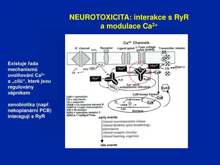 NEUROTOXICITA: interakce s RyR