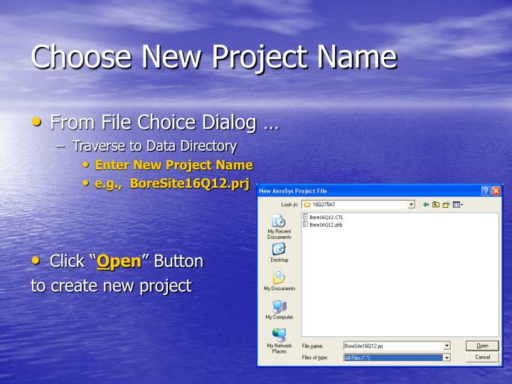 Choose New Project Name