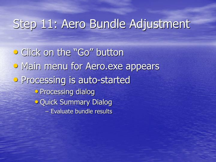 Step 11: Aero Bundle Adjustment