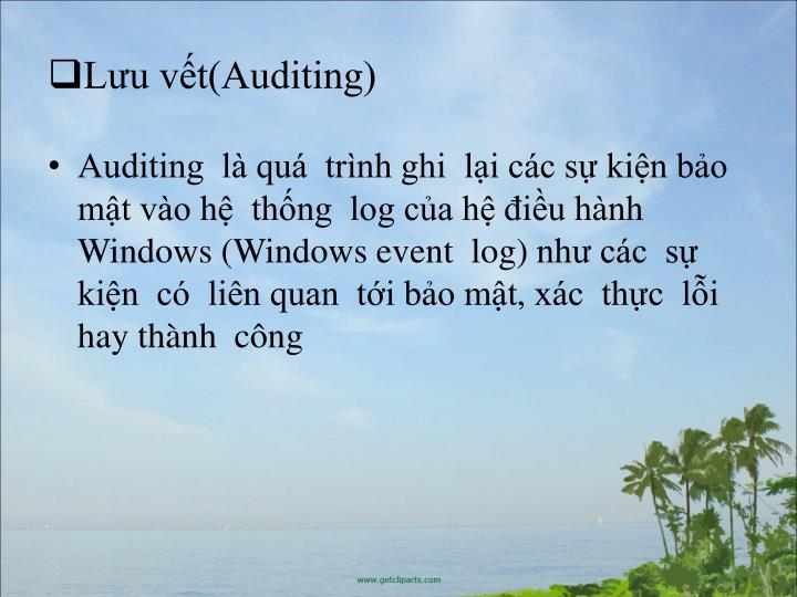 Lu vt(Auditing)