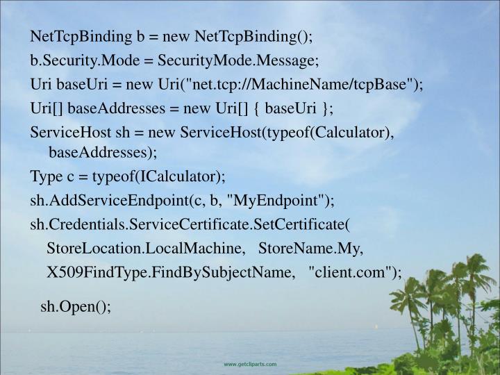 NetTcpBinding b = new NetTcpBinding();