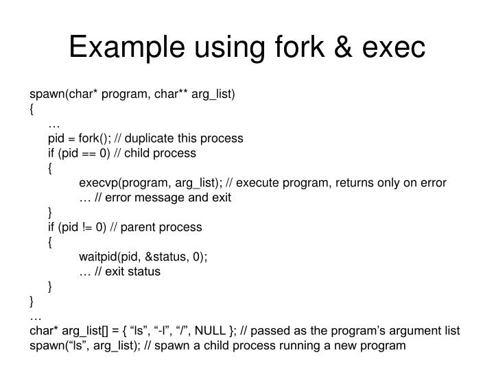 Example using fork & exec