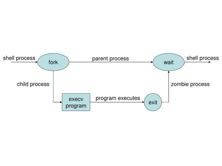 shell process