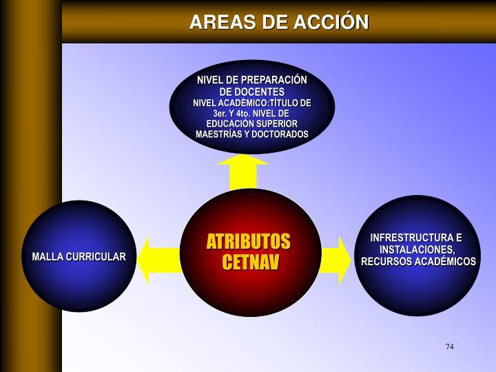 AREAS DE ACCIÓN