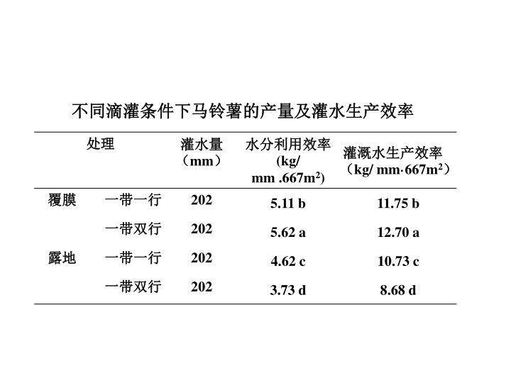 不同滴灌条件下马铃薯的产量及灌水生产效率