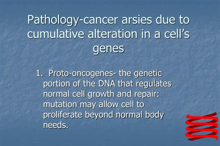 Pathology-cancer arsies due to cumulative alteration in a cell's genes