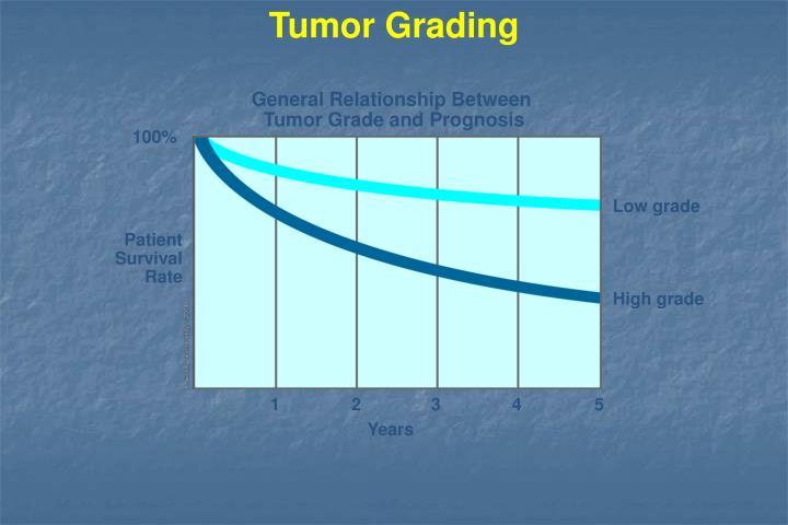 Tumor Grading