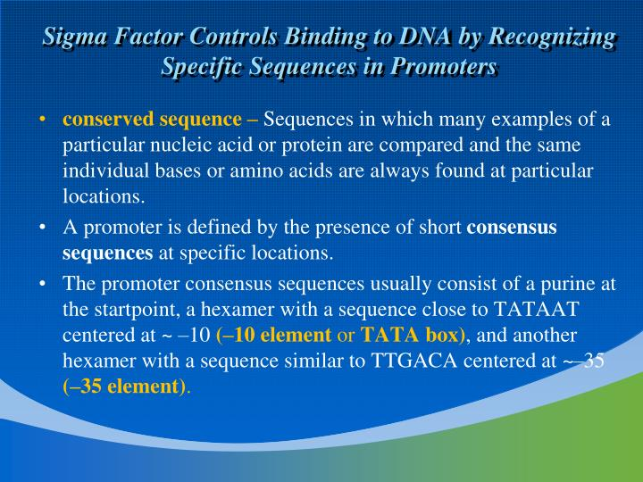 Sigma Factor Controls Binding to DNA by Recognizing Specific Sequences in Promoters
