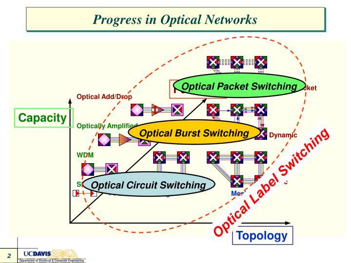 Progress in Optical Networks