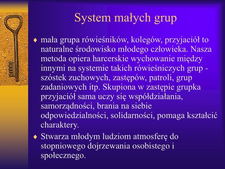 System małych grup