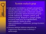system ma ych grup